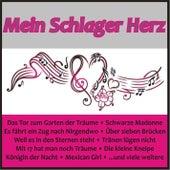 Mein Schlager Herz de Various Artists
