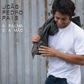 A palma e a mão by João Pedro Pais