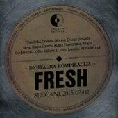 Fresh 2015. Siječanj 02/02 by Various Artists