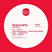 Peach Bits Vol.2 by Various Artists