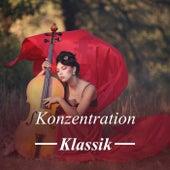 Konzentration: Klassik by Various Artists