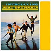 Introducing de The Beau Brummels
