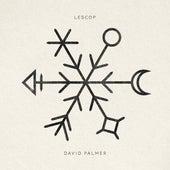 David Palmer - Single by Lescop