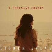 A Thousand Cranes by Cigdem Aslan