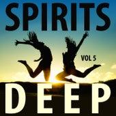 Spirits Deep, Vol. 5 by Various Artists
