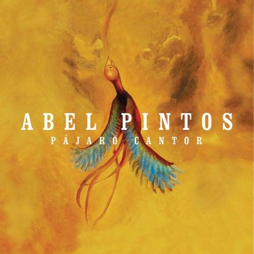 Pájaro Cantor de Abel Pintos