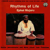 Rhythms Of Life by Ephat Mujuru