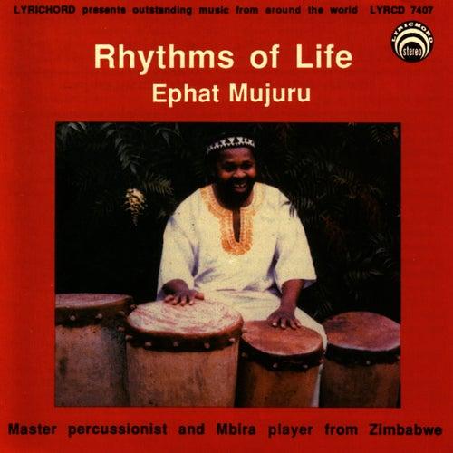 Rhythms Of Life by Ephat Mujuru