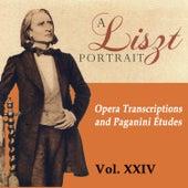 A Liszt Portrait, Vol. XXIV by Alfred Brendel