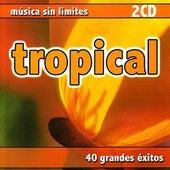 Música Sin Limites - Tropical de Various Artists