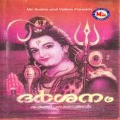 Darsanam by Various Artists