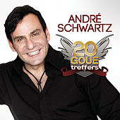 20 Goue Treffers de Andre Schwartz