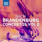 Bach: Brandenburg Concertos Nos. 4-6 by Various Artists