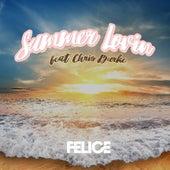 Summer Lovin (feat. Chris Burke) de Felice