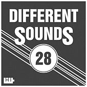 Different Sounds, Vol. 28 by Various Artists