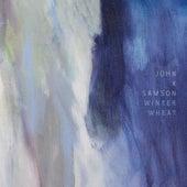 Alpha Adept von John K. Samson