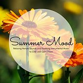 Summer Mood - Relaxing Nature Sounds and Soothing Instrumental Music to Chill and Calm Down by Soundscapes Relaxation Music Academy
