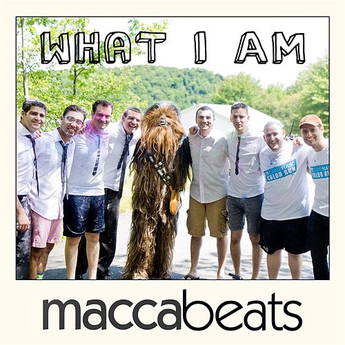 What I Am by Maccabeats