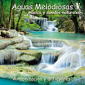Aguas Melodiosas V by Steve Gordon