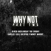 Why Not Part 2 (Presented By Capo Lee) de Various Artists