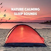 Nature Calming Sleep Sounds by Various Artists