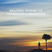 Beautiful Journey of Tranquility & Relaxation by Various Artists