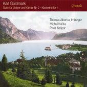 Goldmark: Chamber Works de Thomas Albertus Irnberger