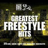 Sleeping Bag Records Greatest Freestyle Hits von Various Artists