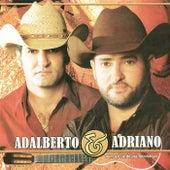 Nunca É Tarde pra Recomeçar de Adalberto E Adriano