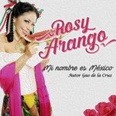 Mi Nombre Es México by Rosy Arango