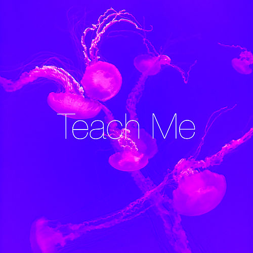 Teach Me by Bayla