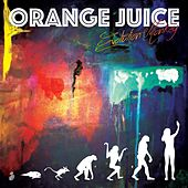 Evolution Monkey by Orange Juice