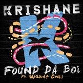 Found Da Boi (feat. Wande Coal) de Krishane