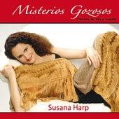 Misterios Gozosos: Cantos de Ida y Vuelta by Susana Harp