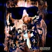 Shahinam by Shahin Najafi