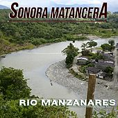 Río Manzanares by Various Artists