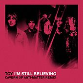 I'm Still Believing (C.O.A.M Rremix) von Toy