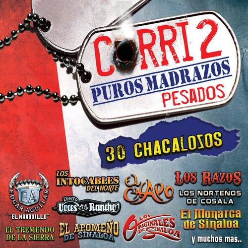 Corri2 'Puros Madrazos Pesados' by Various Artists