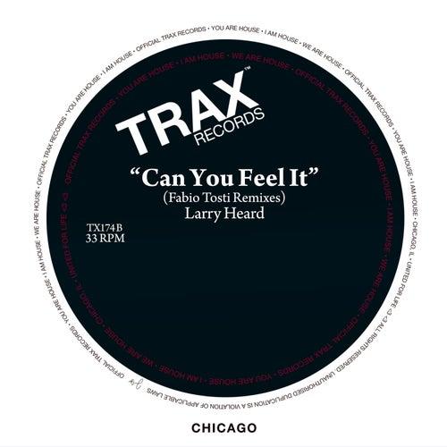 Can You Feel It (Fabio Tosti Remixes) by Larry Heard