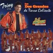 Los Dos Grandes de Tierra Caliente by Various Artists