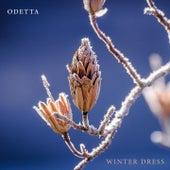 Winter Dress by Odetta