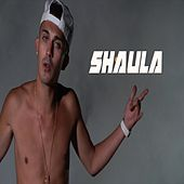Shaula by Arce