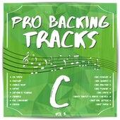 Pro Backing Tracks C, Vol. 3 by Pop Music Workshop