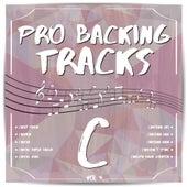 Pro Backing Tracks C, Vol. 4 by Pop Music Workshop