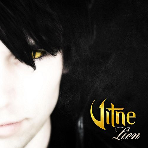 Lion by Vitne