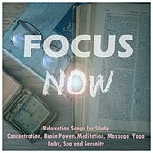 Focus Now: Relaxation Songs for Study, Concentration, Brain Power, Meditation, Massage, Yoga, Baby, Spa and Serenity de Various Artists