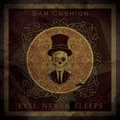 Evil Never Sleeps by Sam Cushion