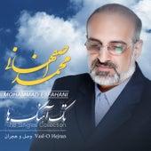 The Singles: Vasl-O Hejran by Mohammad Esfahani