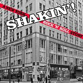 Shakin': A New York Rock 'n' Roll Story by Various Artists