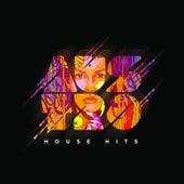Austro House Hits de Various Artists